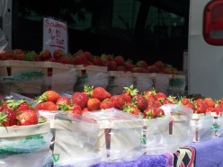 Farmers Market Opening Day 005