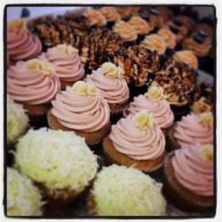 Queen City Cupcakes   Thursday's assortment