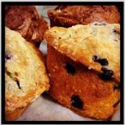 Baked | blueberry muffins