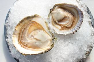 Hanover St Chophouse | Maine Belon Oysters