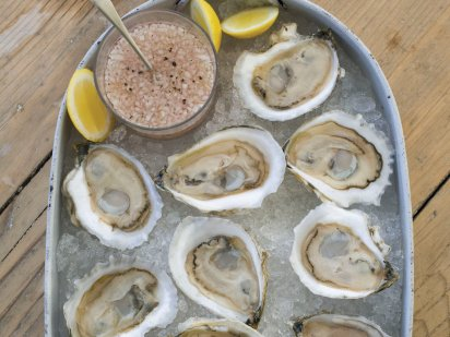 201108fw-xl-oysters-on-the-half-shell-with-rose-mignonette.jpg